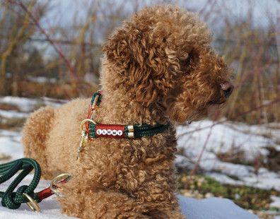 PPM Set - Dogs Jewellery