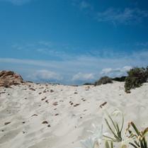 white_sand.jpg
