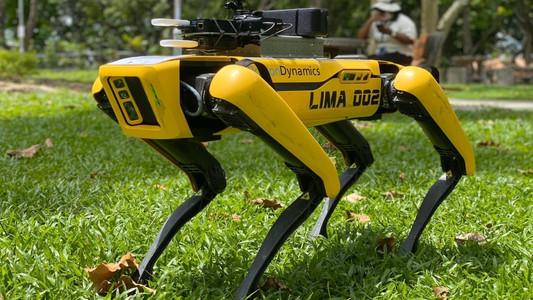 Spot Social Distancing Robot