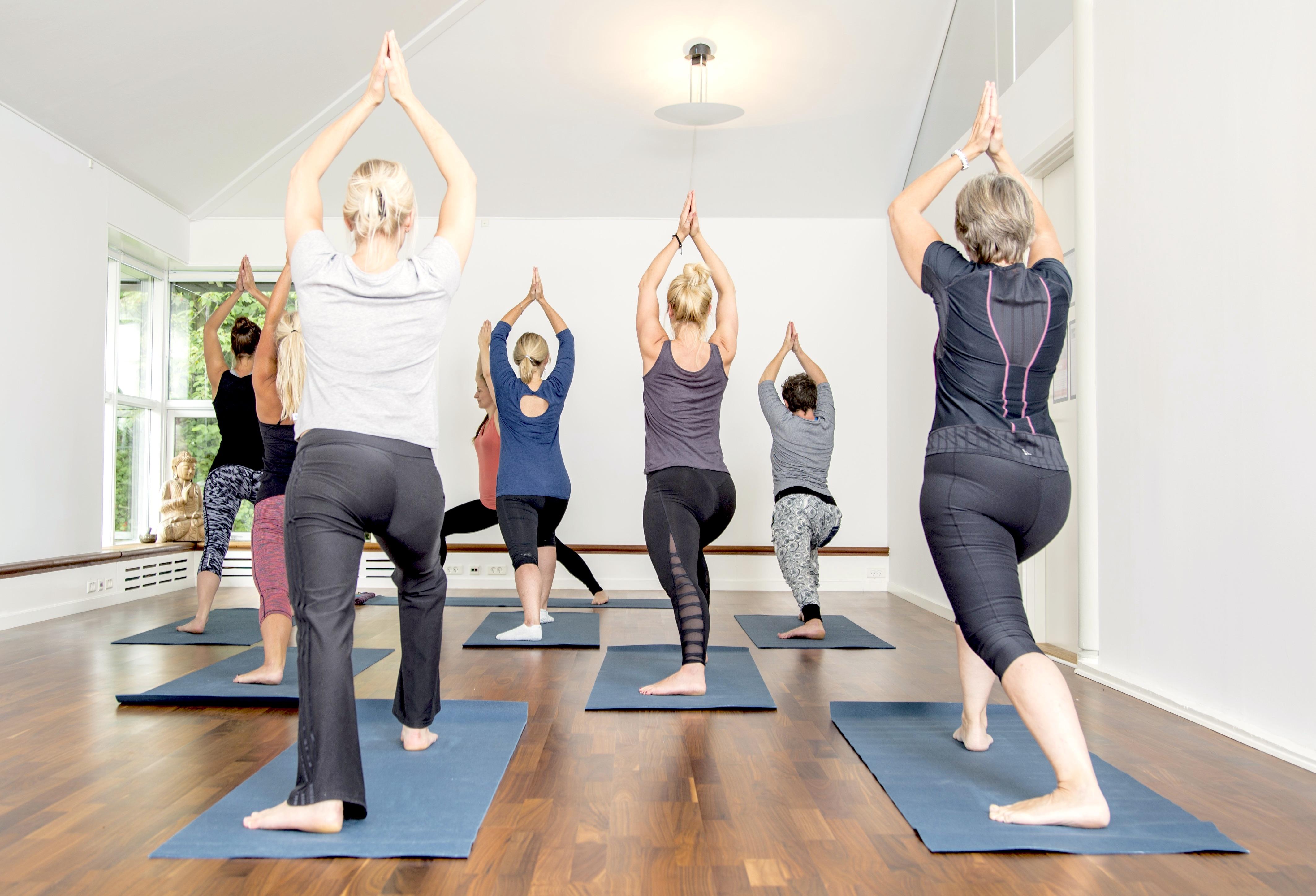 living lotus yoga studio kongens lyngby