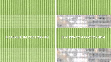 Basic св.зеленый — копия.jpg