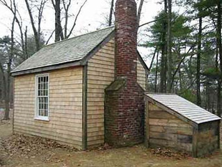 森の自然学校の原点は、セルフビルドの山小屋作り