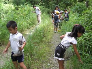 2019年8月25日(日)「森づくりものづくり」体験開催! ~日帰りもお泊りもできます~
