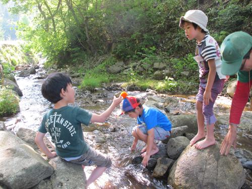 500ジュニア川遊び