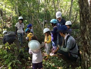 親子で遊ぼう学ぼう! クラフト作りとランチ付♪ 11月24日 清流の森づくり開催
