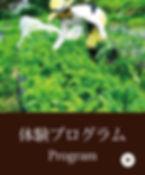 menu_c_3.jpg