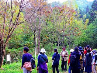 森の自然学校ヒストリー