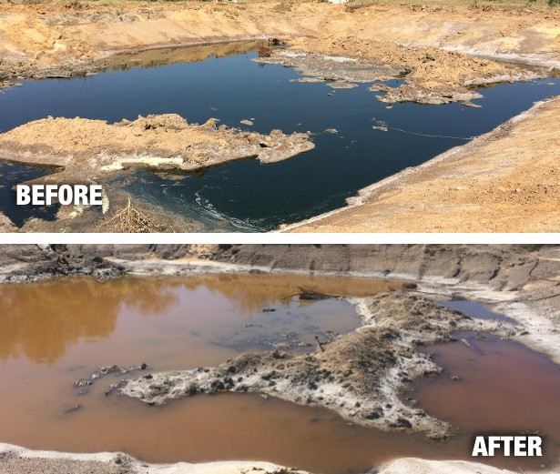 Geraldton Tannery Remediation of the Old Tailing Dams through polyphosphate conversion