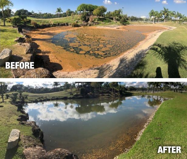 Brazil lake case study 2018