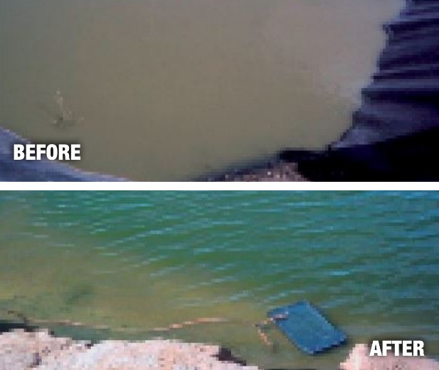Removing the Stink Using The Water Cleanser to clean Sewerage Ponds