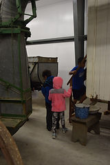 Students on a field trip, look inside a cook shack   Goessel Museum