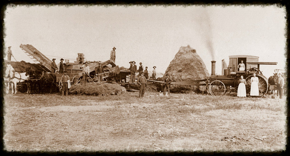 Threshing crew at David Voth farm 1897   Goessel Museum