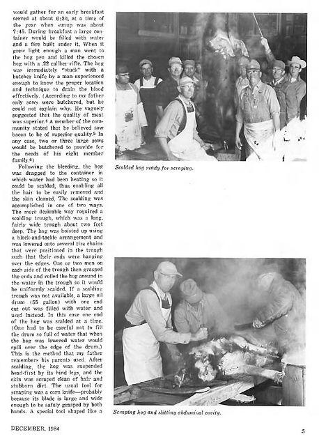 Hog Butchering Mennonite Life 1984 pg. 5