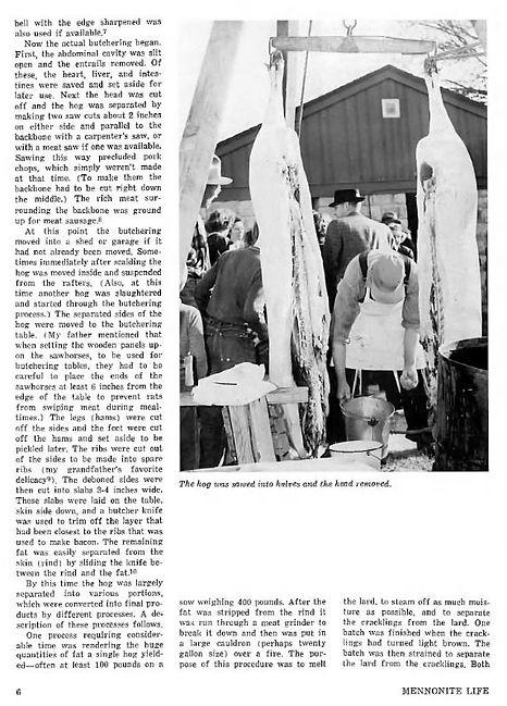 Hog Butchering Mennonite Life 1984 pg. 6