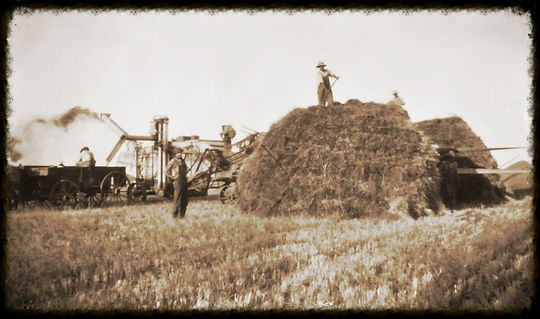Threshing wheat in KS | Goessel Museum