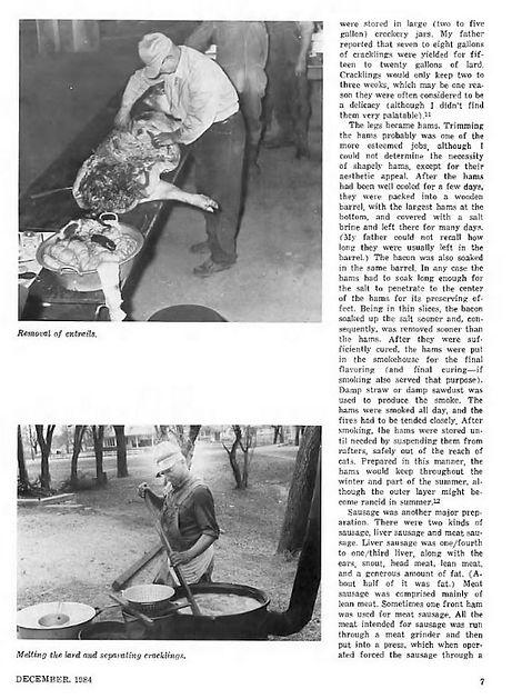 Hog Butchering Mennonite Life 1984 pg. 7