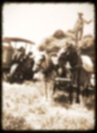 Bato Schroeder of hay rack | Goessel Museum