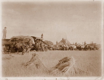 D. J. Regehr with threshing crew in ND 1912