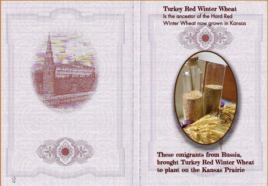 Russian Passport cover inside.JPG