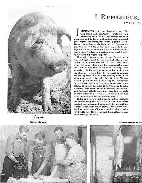 Hog Butchering artical Mennonite Life 1947