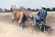 Sulky plow in use at a past Threshing Days | Goessel Museum