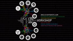 2013 IMO workshop