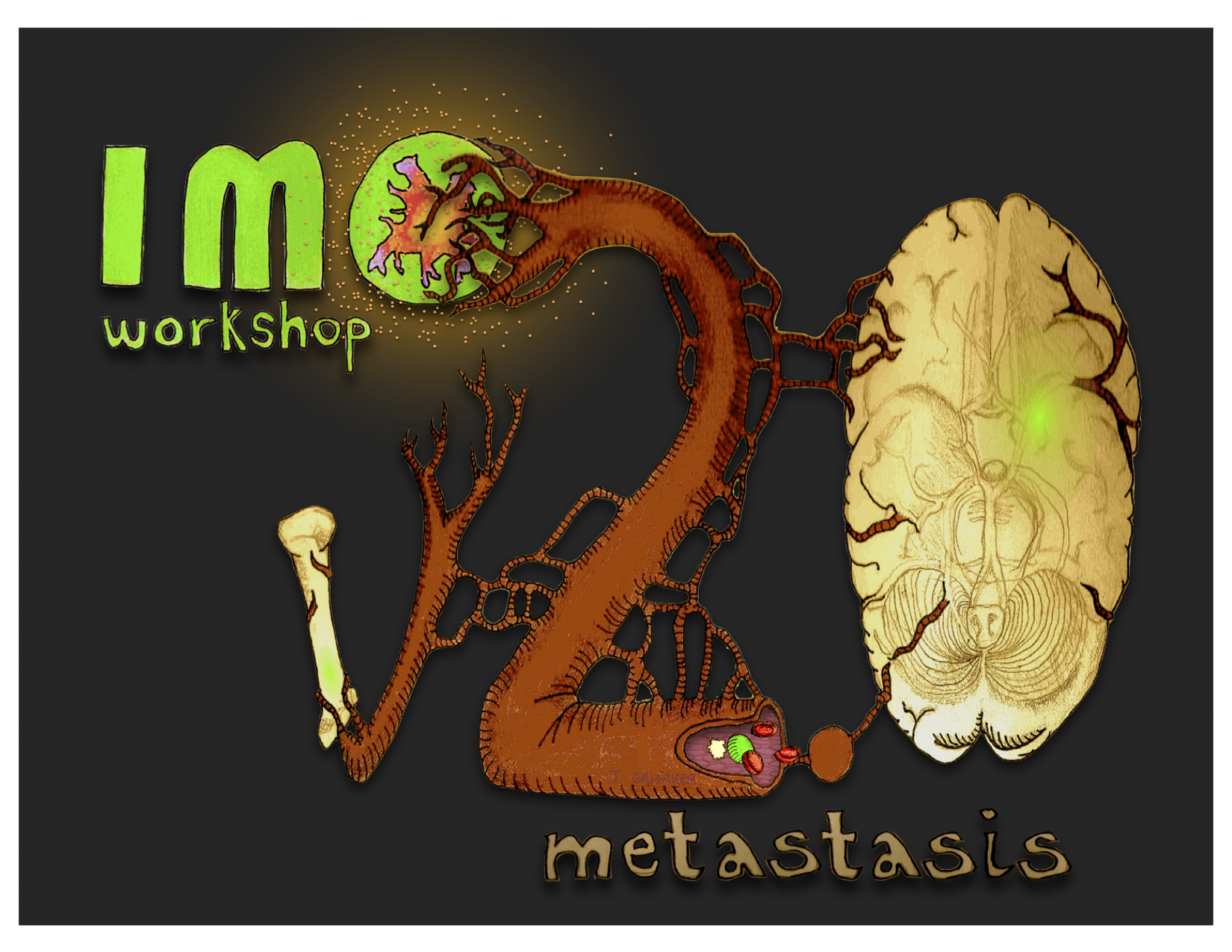 2012 IMO workshop - Metastasis