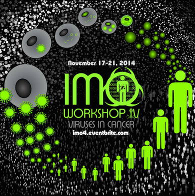 IMO's 4th annual workshop