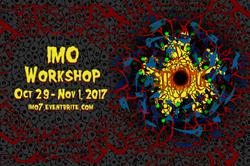 2017 IMO Workshop