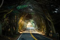 Highway 1, California, USA