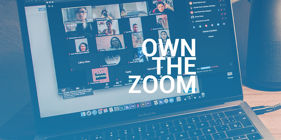 OWN THE ZOOM