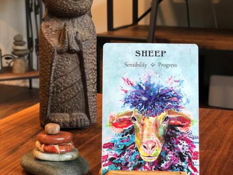 Sheep Spirit Animal oracle card