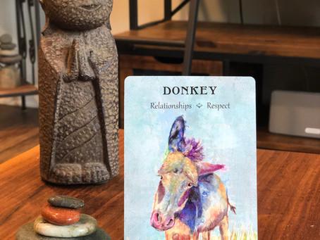 Donkey Spirit Animal