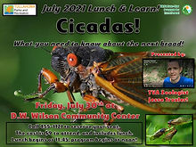 July Lunch and Learn 2021 - Cicadas and more.jpg