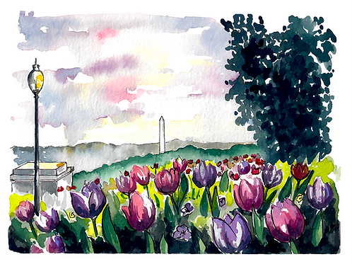 Washington Monument Watercolor Print or greeting card