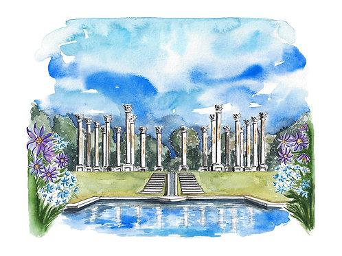 Arboretum Watercolor Print or Greeting Card