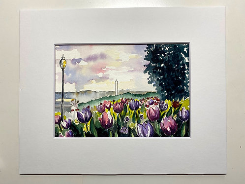 5x7 Washington Monument and Tulips