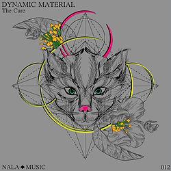 Dynamic Material