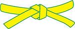 yellow-green belt.jpg