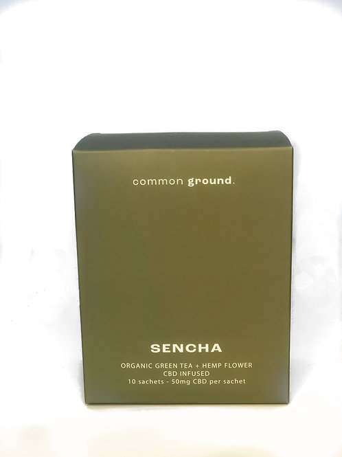 SENCHA GREEN TEA CBD TEA-COMMON GROUND