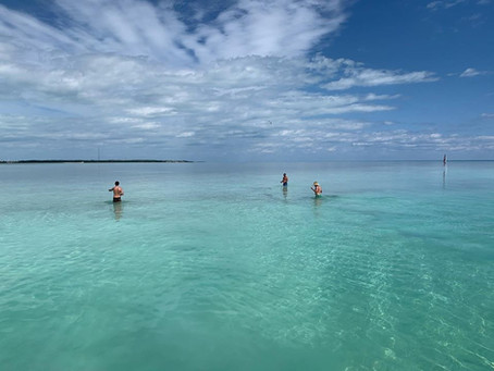 Discover Our Sandbar Swims