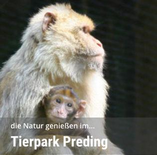 08_Tierpark-Preding@2x.jpg
