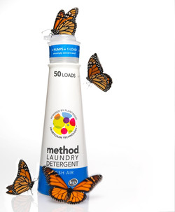 WIXButterflies.jpeg