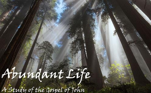 abundant life title.jpg