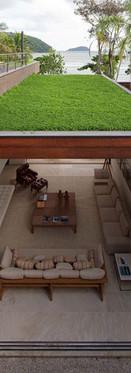 techo verde.jpg