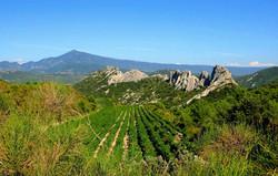 Mont Ventoux & Dentelles