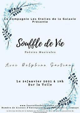 Souffle de Vie - Delphine Sartiaux - www