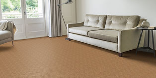 Natural Carpet.jfif