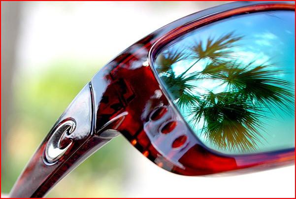 cbdf861261 Art For Eyes Optical Coco Song
