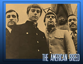 ILL ARTIST PIC FRAME_AMERICAN BREED_0000
